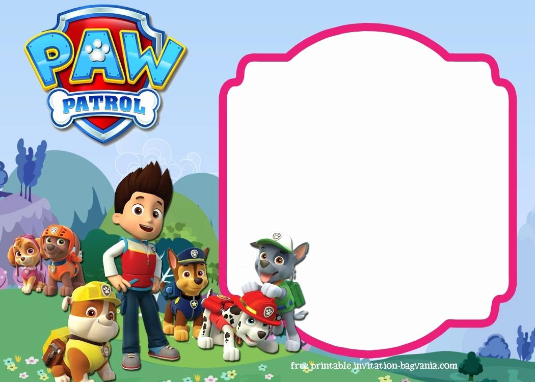 Birthday Invitations the Paw Patrol Birthday Invites for