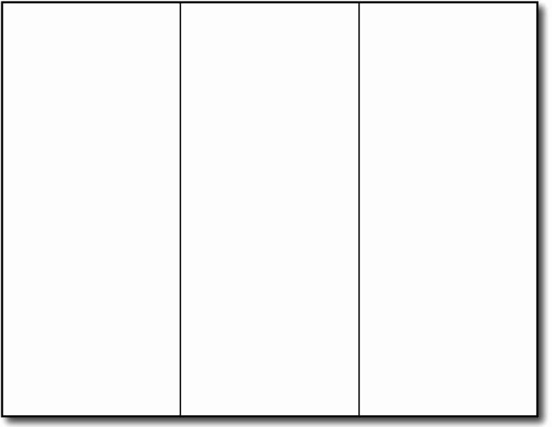 Blank Brochure Template Newspress