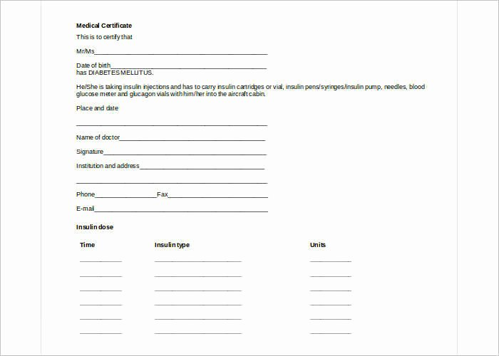 Blank Check Templates for Excel
