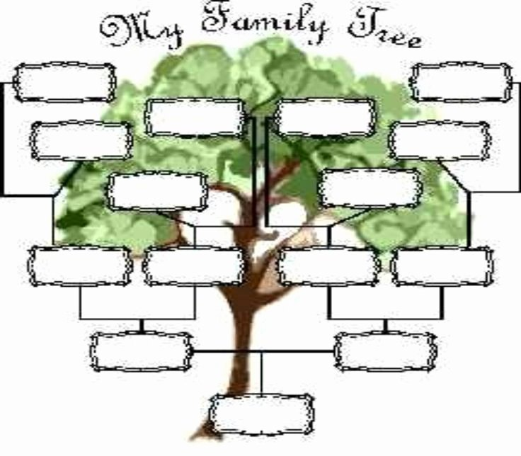 Blank Family Tree Page View Full Size