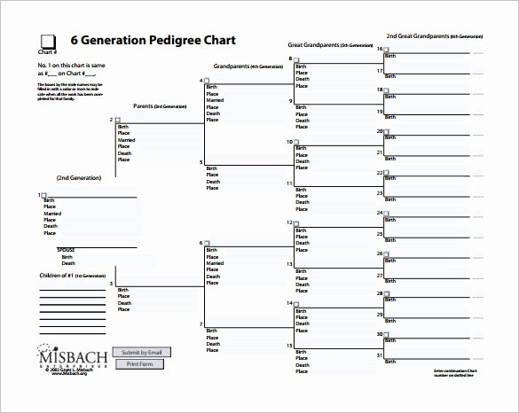 Blank Pedigree Chart Template Blank Ancestry Charts