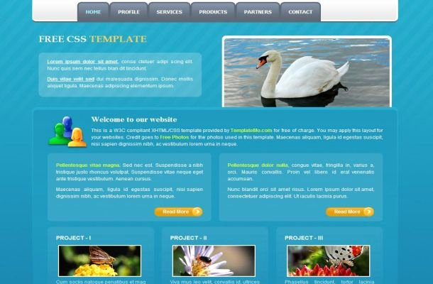 Blue Nature Free Css HTML Website Template Free Css