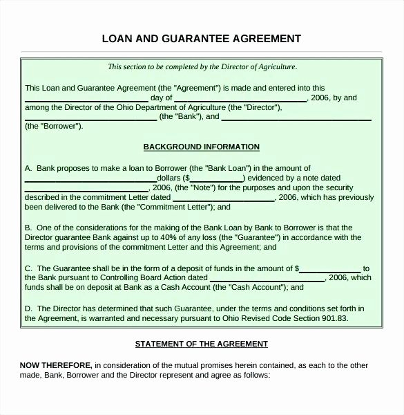 Borrowing Money Contract Example Loan Agreement Template