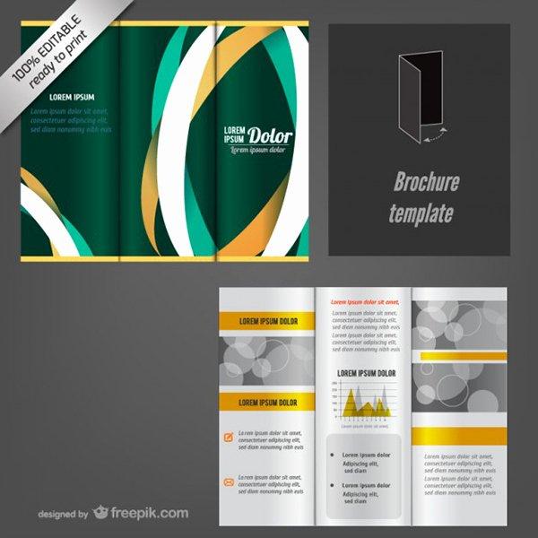 Brochure Template Google Docs Mfawriting332 Web Fc2