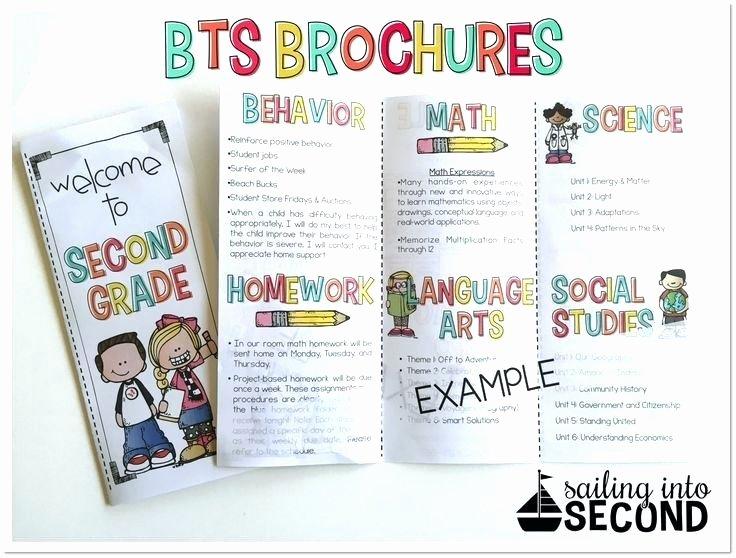 Brochure Templates for School Project Best Teacher Ideas