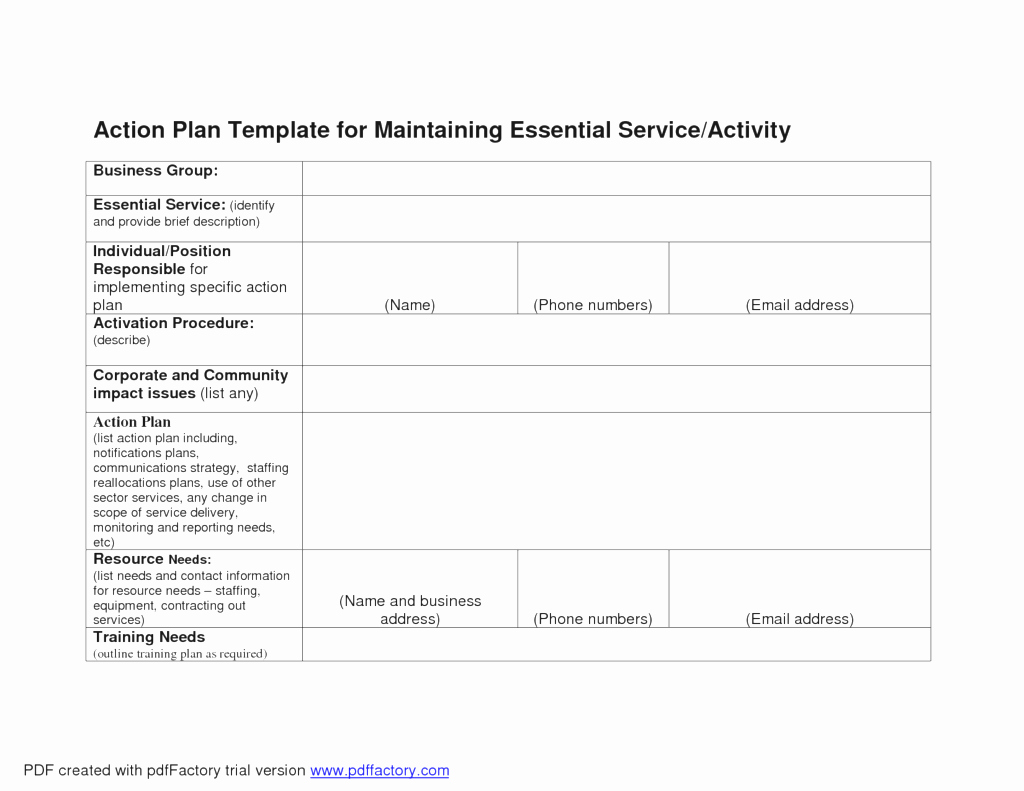 Business Action Plan Template Mughals