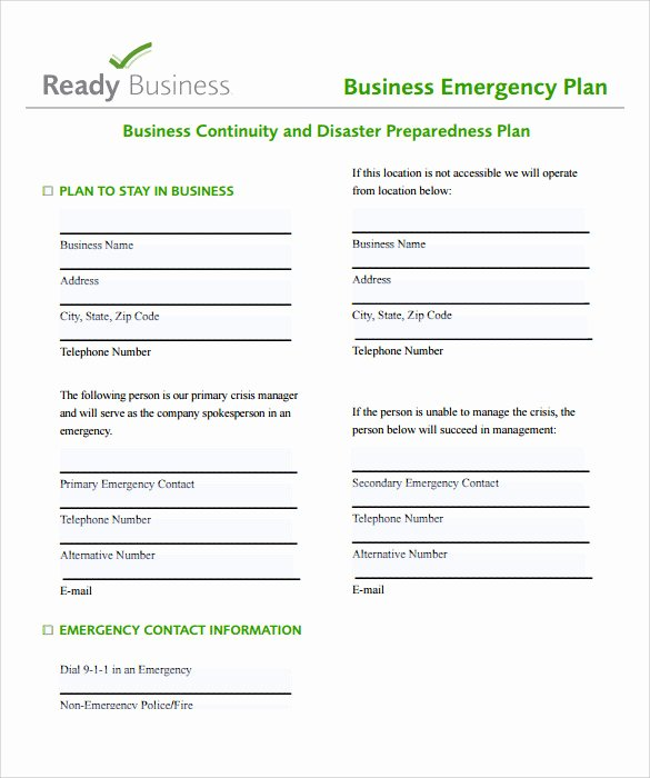 Business Action Plan Templates – 8 Samples Examples format