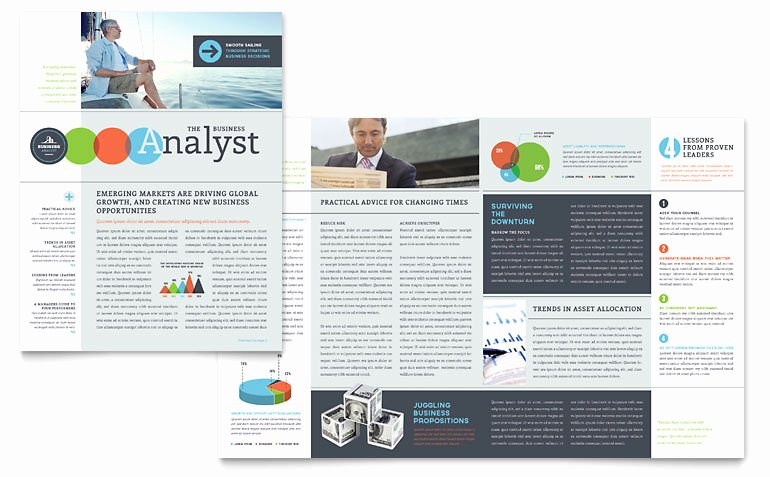 Business Analyst Newsletter Template Word & Publisher