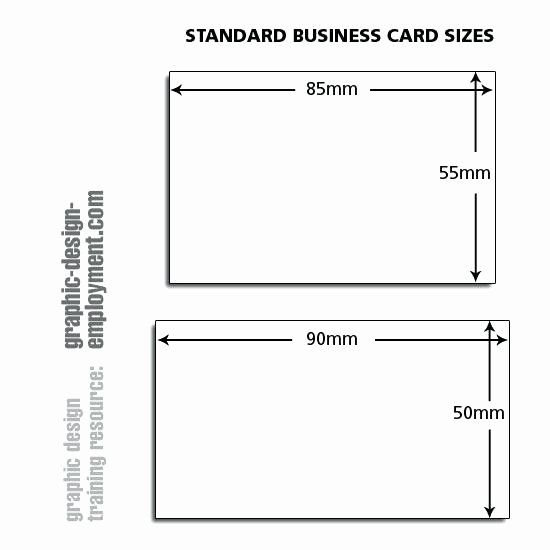 Business Card Template Tutorial Free Shop Size