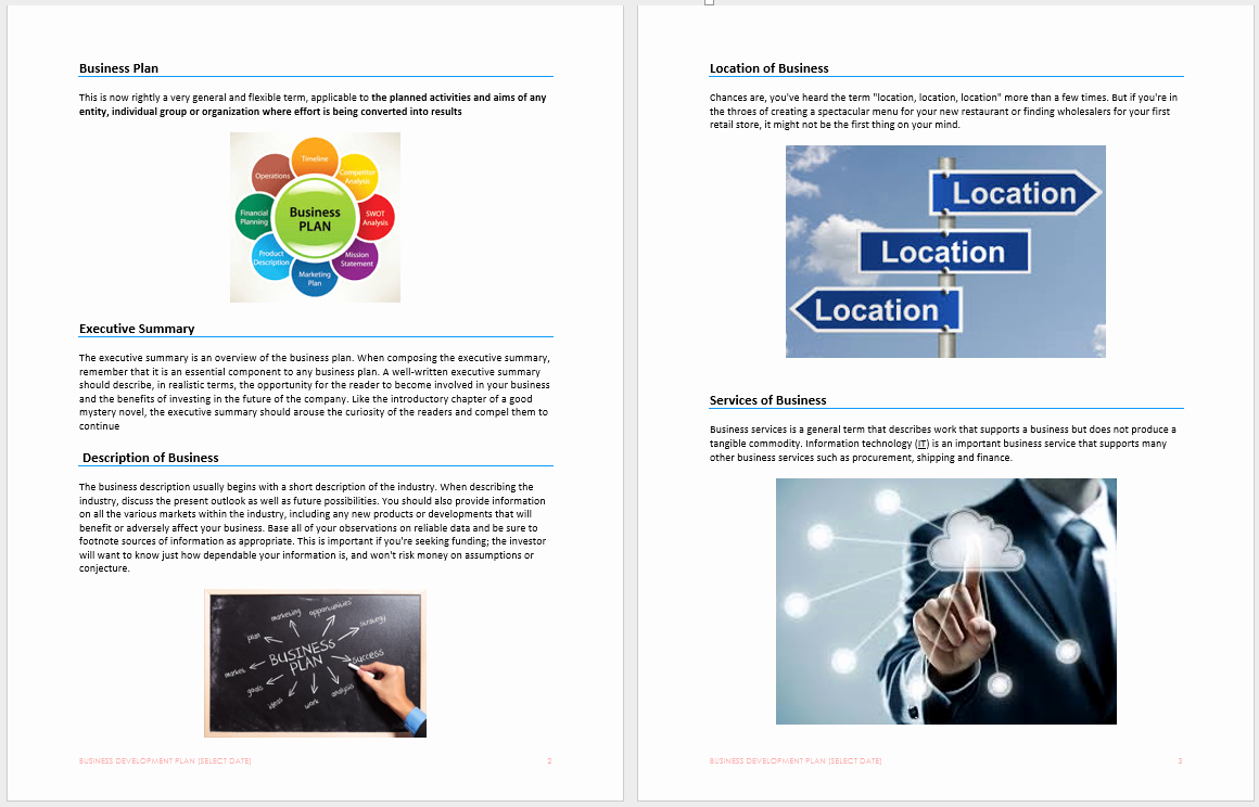 Business Development Plan Template Microsoft Word Templates