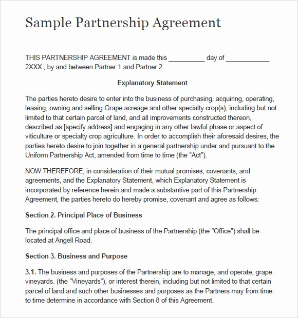 Business Partnership Template