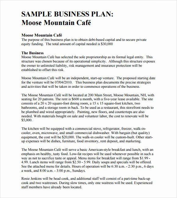 Business Plan format Free Examples Music Search Engine