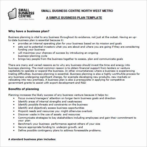 Business Plan format Pdf
