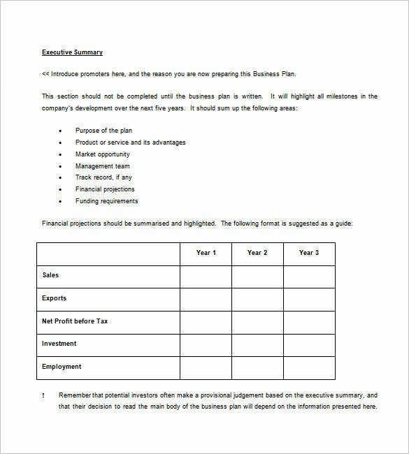 Business Plan Template – 97 Free Word Excel Pdf Psd