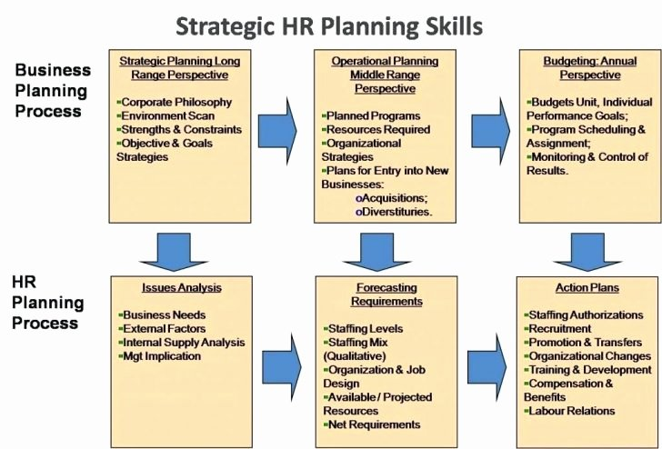Business Plan Template Human Resources Boisefrycopdx