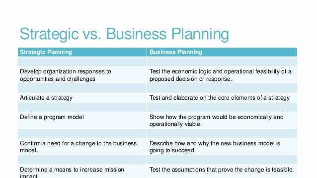 Business Plan Vs Strategic Plan Reportz725 Web Fc2