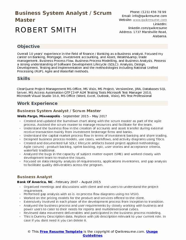 Business System Analyst Resume Samples