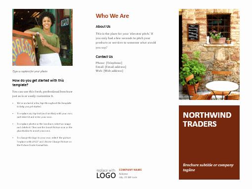 Business Tri Fold Brochure Fice Templates