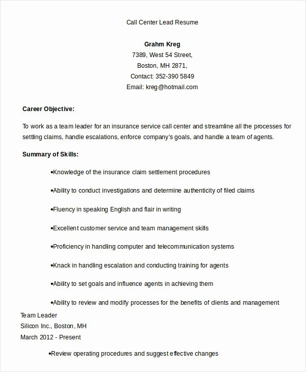 Call Center Resume Example 9 Free Word Pdf Documents