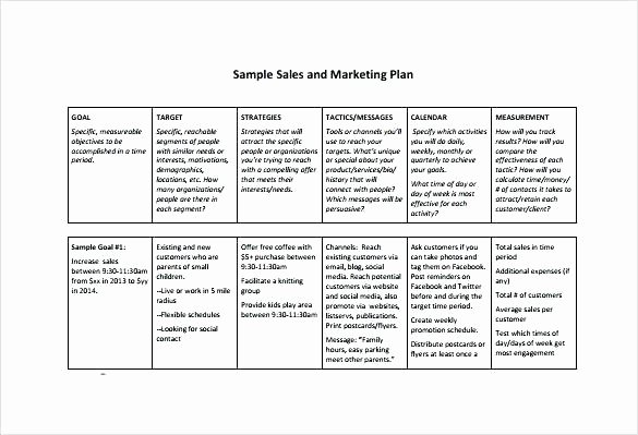Call Plan Template Excel Sales Call Plan format Template