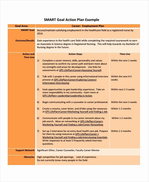Career Action Plan Template 14 Free Sample Example