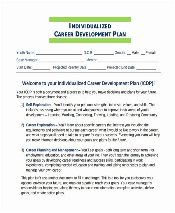 Career Plan Template Example Staruptalent