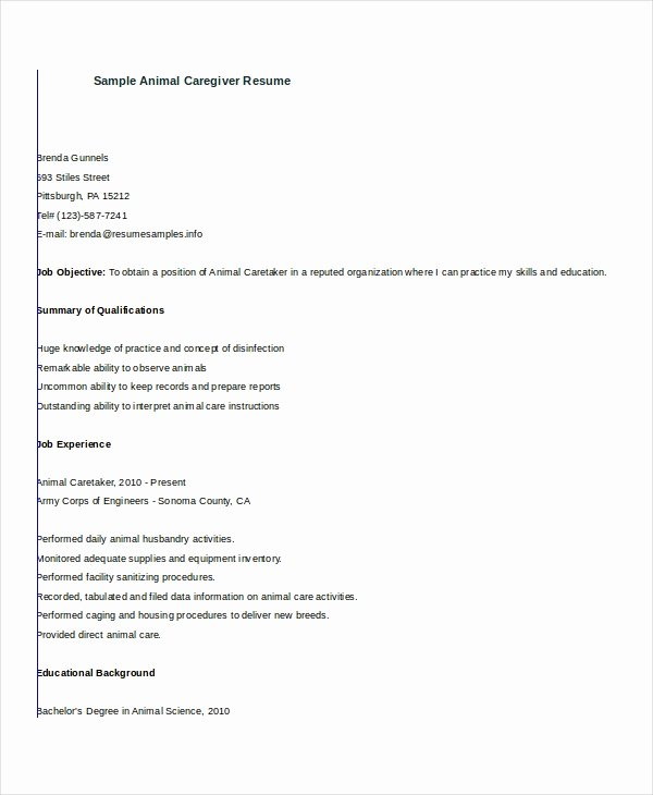 Caregiver Resume Example 7 Free Word Pdf Documents