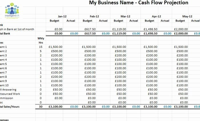 Cash Flow Projection Template for Business Plan