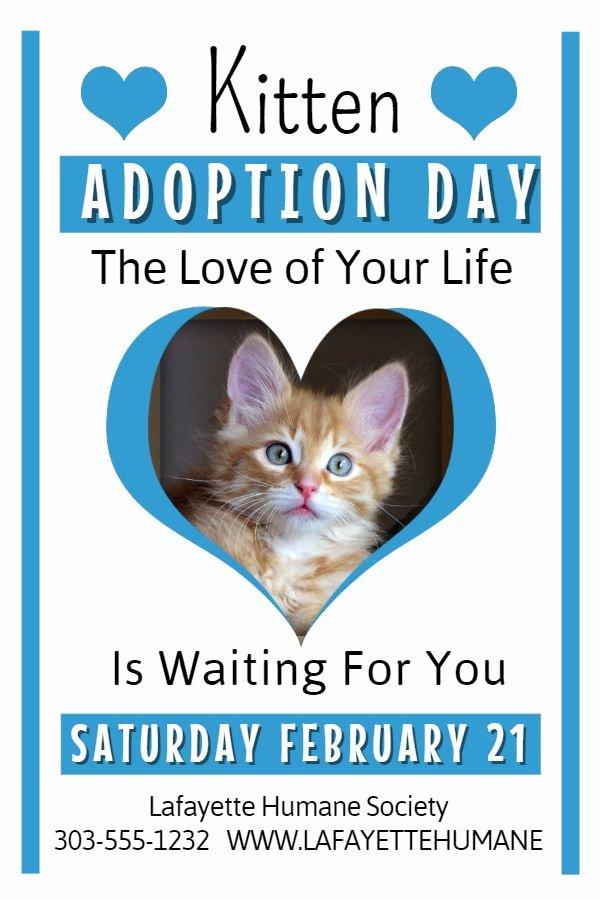 Cat Adoption Flyer Template – Bryan Flyers