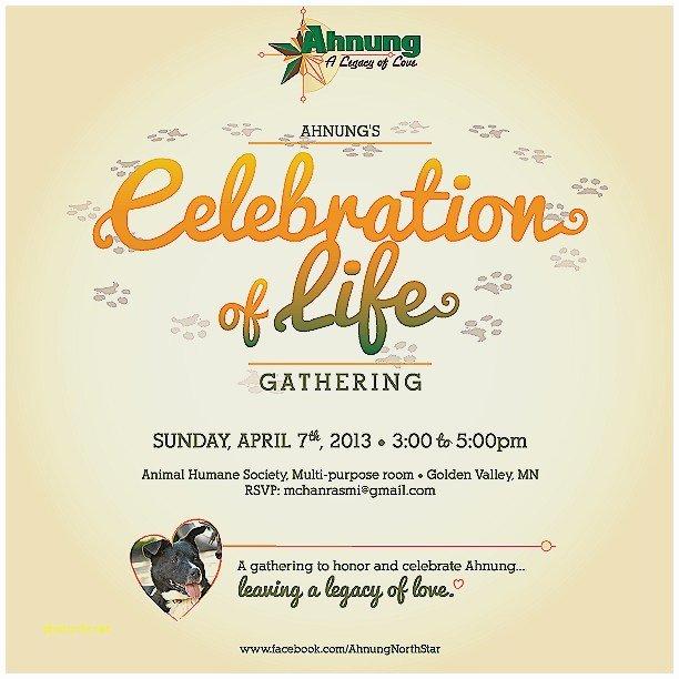 Celebration Life Card Celebrations Throughout