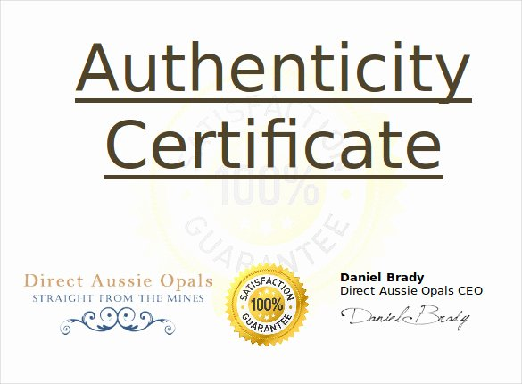 Certificate Of Authenticity Template Certificate