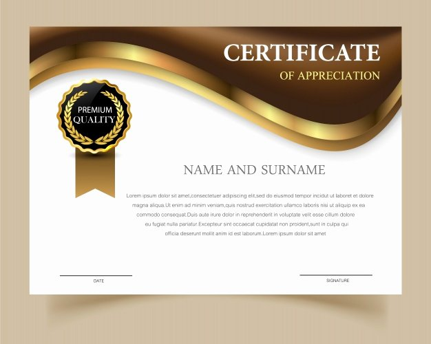 Certificate Template with Elegant Design Vector