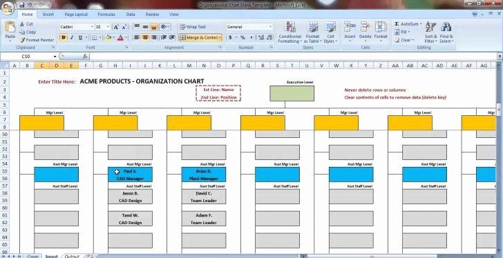 Chart organizational Chart Template