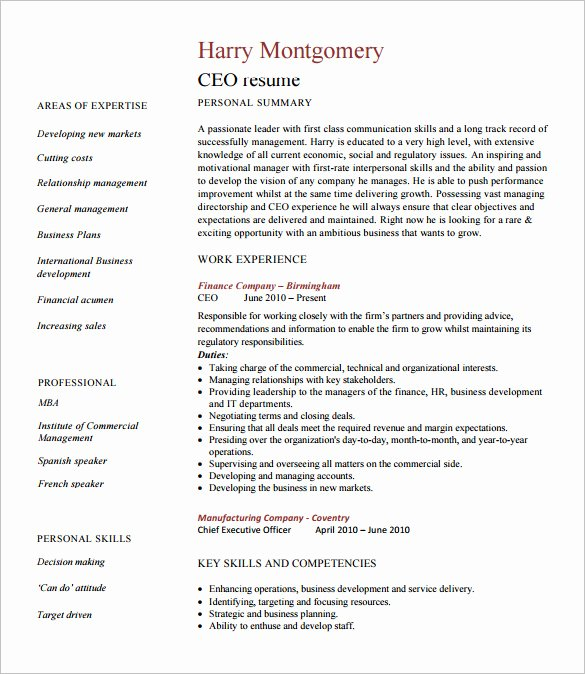 Chief Executive Ficer Resume Template 7 Free Word