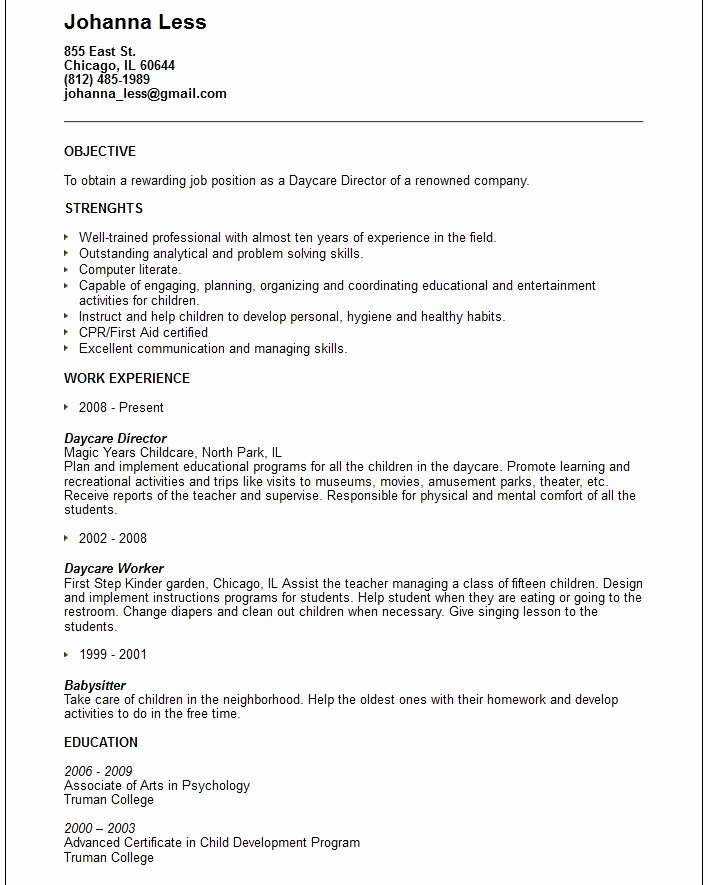 Childcare Provider Resume Latter Example Template