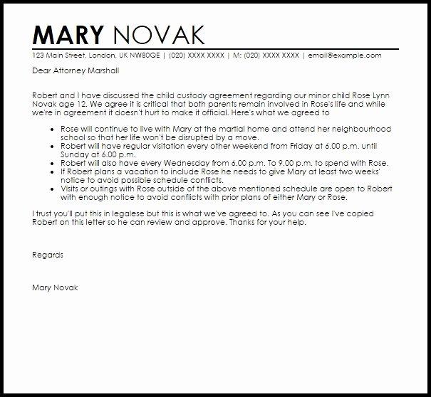 Child Custody Letter Template Invitation Template