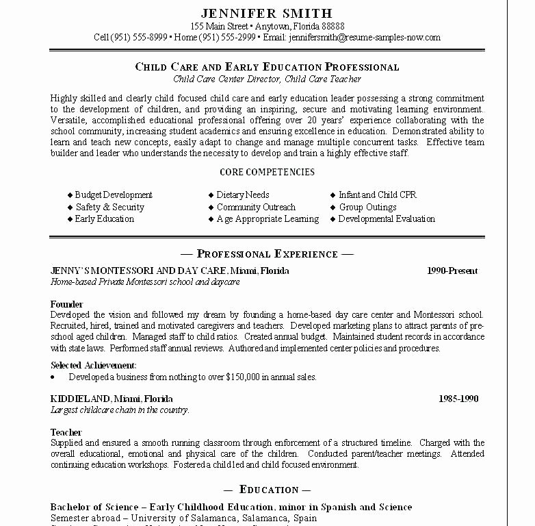 Childcare Provider Cv Examples Home Care Provider Resume