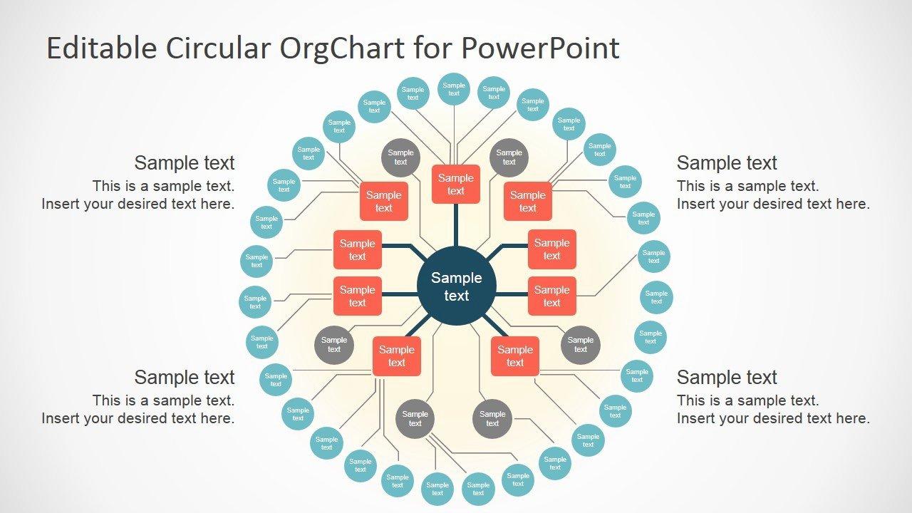 Circular organizational Chart Template Free Templates