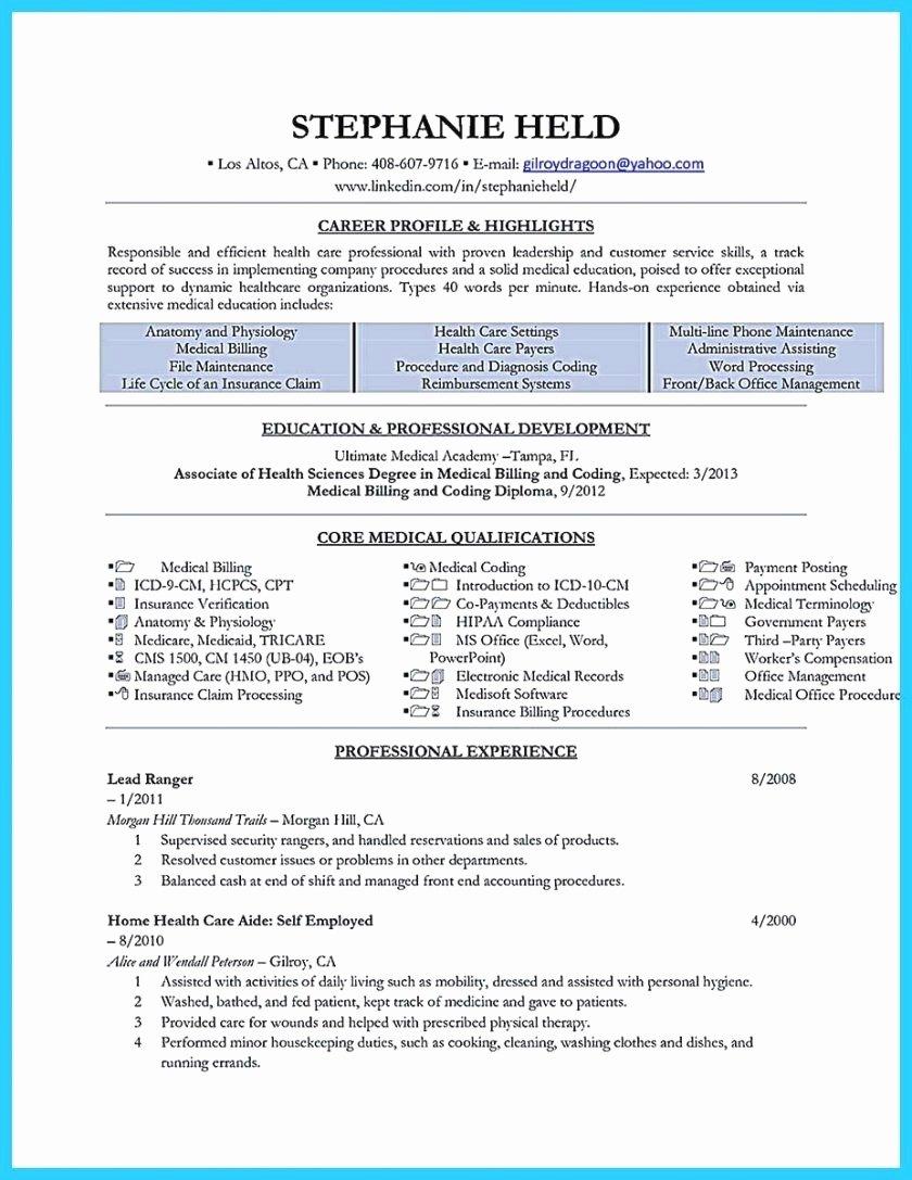 Cleaner Job Description for Resume Luxury Cleaner Job