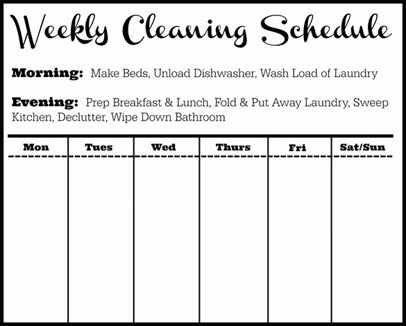 Cleaning Schedule Template 12 Free Sample Example