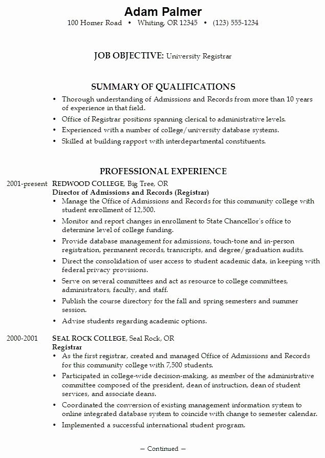 College Application Resume Examples for High School