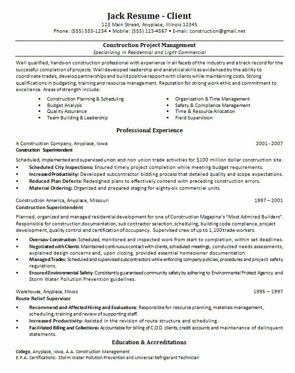 Construction Project Manager Resume Sample Doc