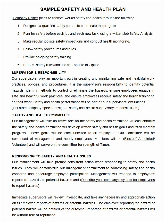 Construction Safety Plan Template 17 Free Word Pdf