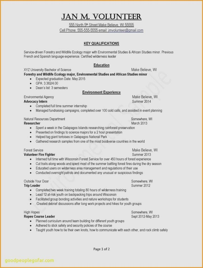 Core Qualifications Examples for Resume New Example Skills