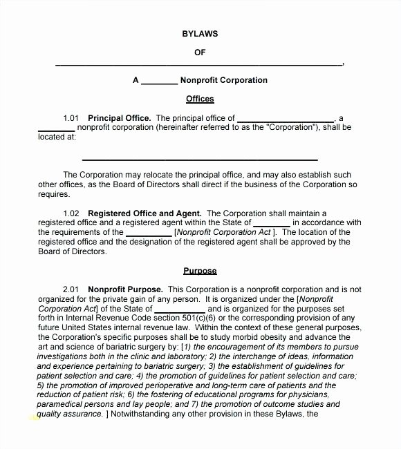 Corporate bylaws Template New 7 Templates at Best Sample