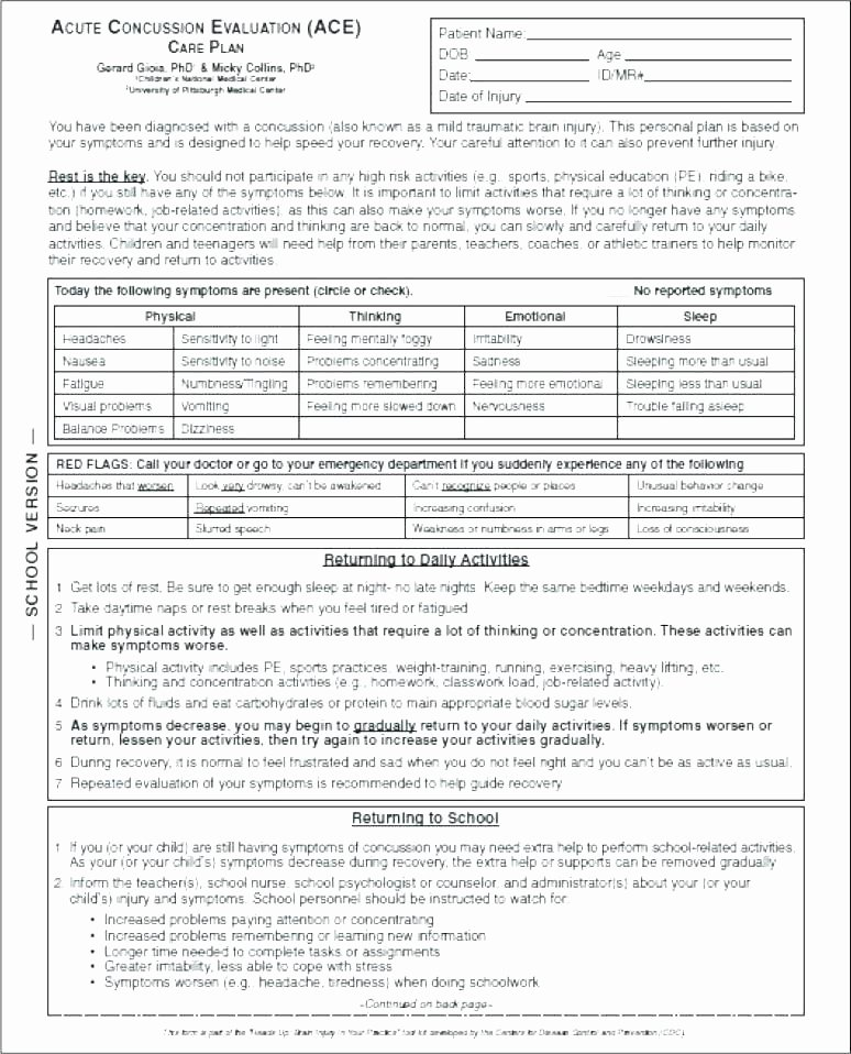 Counseling Treatment Plan Template Pdf Counseling