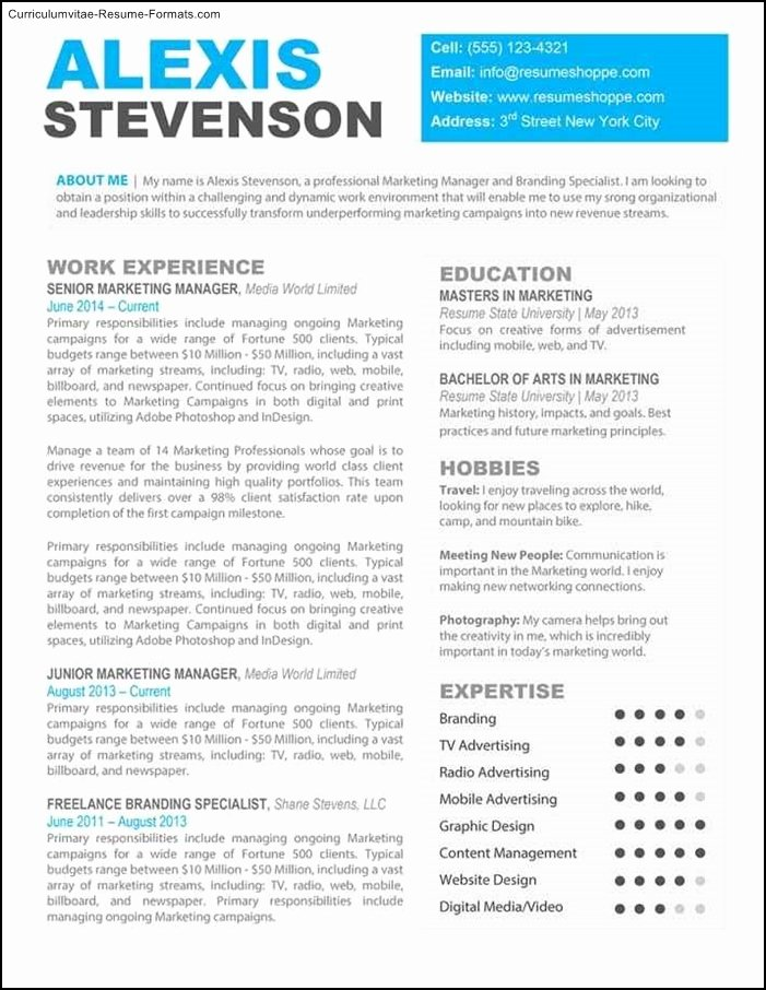 Creative Professional Resume Templates Free Samples