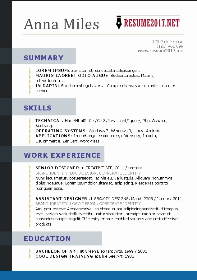 Creative Resume Templates 2017