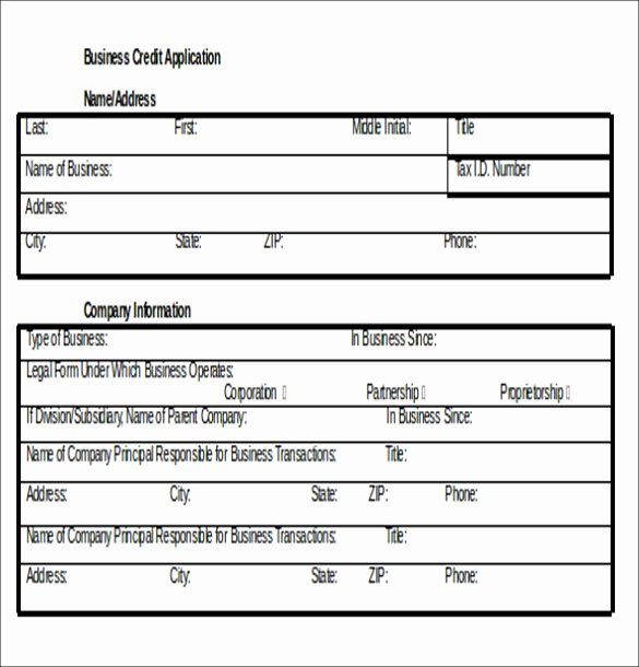 Credit Application Template 32 Examples In Pdf Word