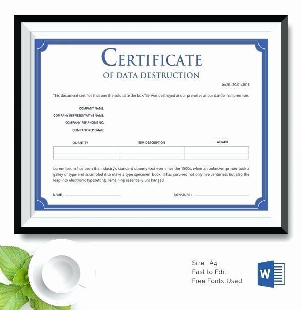 Crunch Gift Certificate Personal Training Template Free